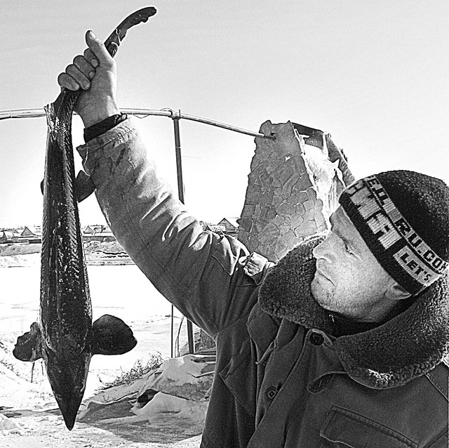 рыбалка в шебекино видео