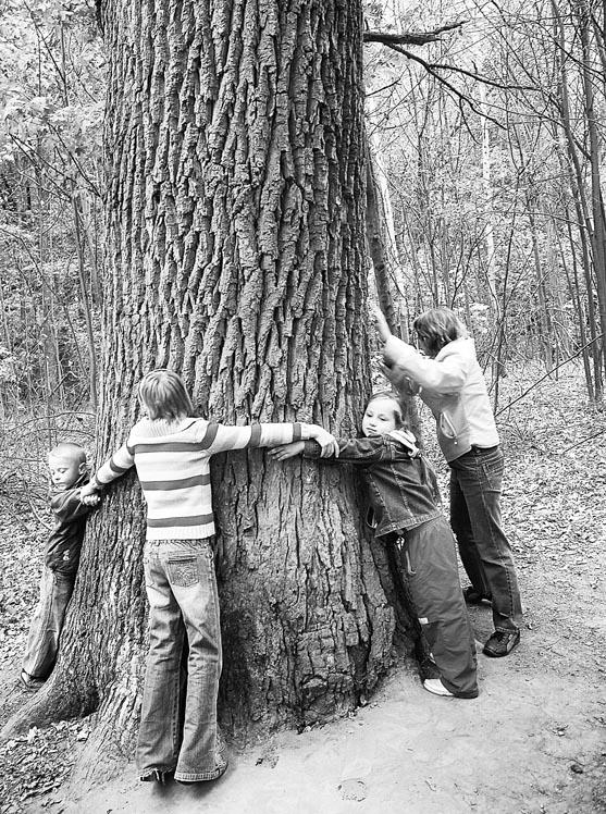 Чтобы не исчез заповедный лес